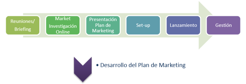 Fases Plan de Marketing